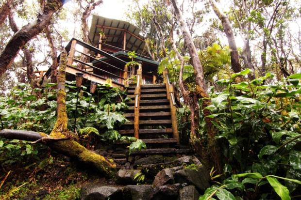 Treehouse in Hawaii